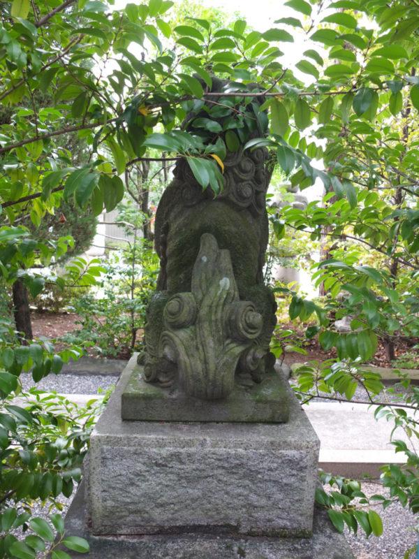 甲府市・金刀比羅神社の護国系狛犬