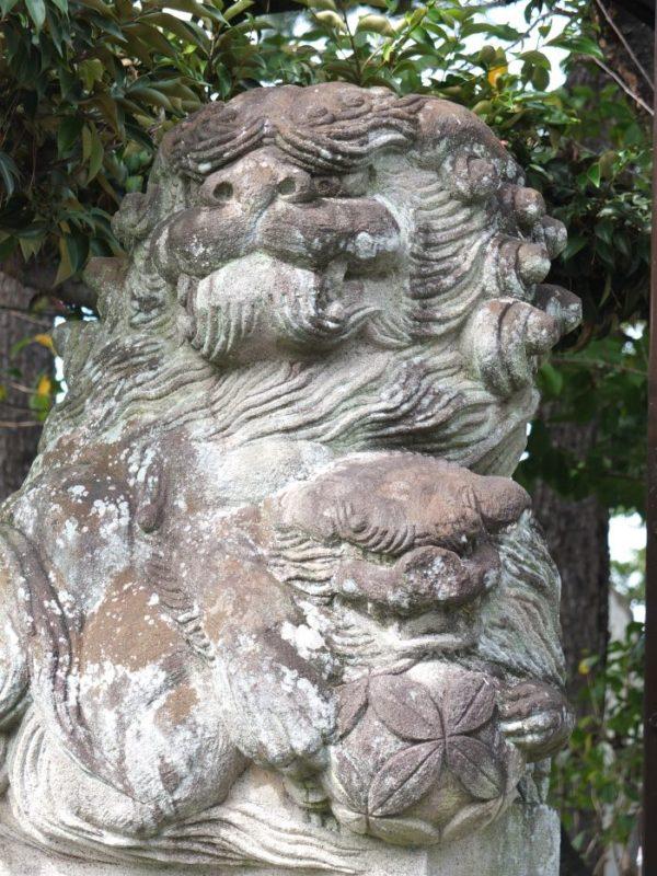 甲府市・稲積神社の江戸風狛犬