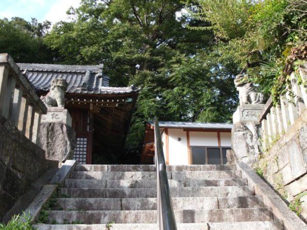 山八幡神社の町を見下ろす狛犬