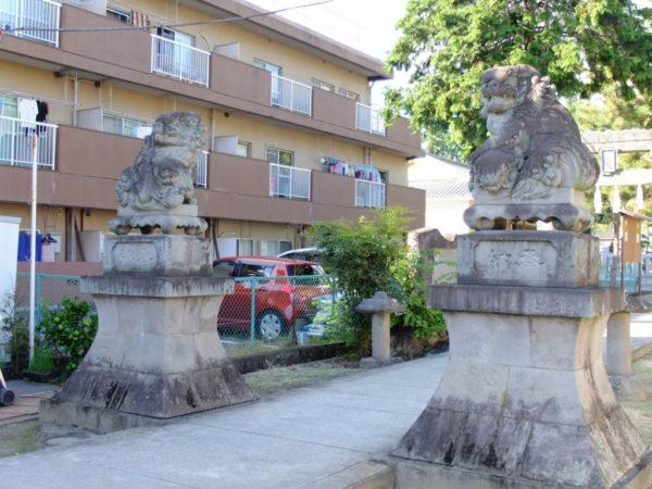 甲府市千塚・八幡神社の狛犬