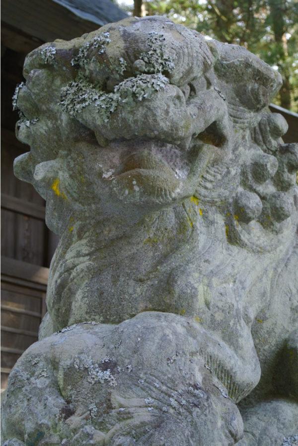河口浅間神社の狛犬