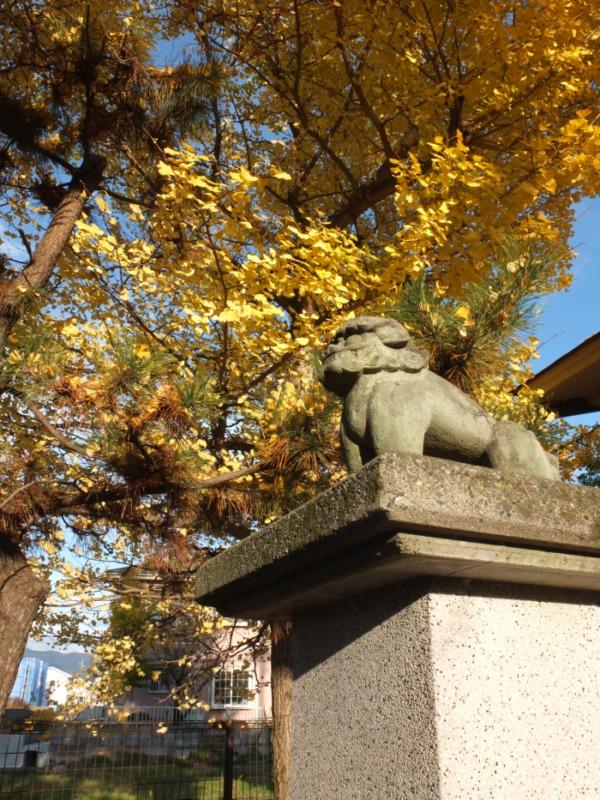 昭和町・日吉神社の食いしばり狛犬