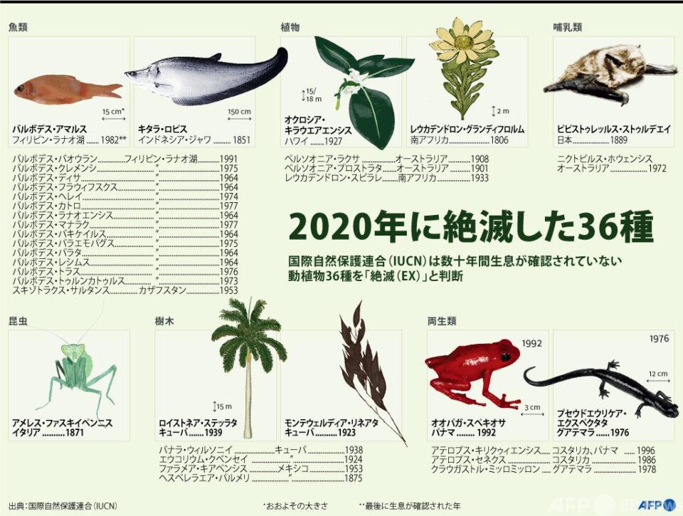 2020年に絶滅した動植物