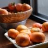 自宅で柿の収穫(富有柿)