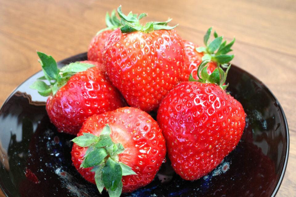 あまおう 福岡が生んだ超大粒いちご