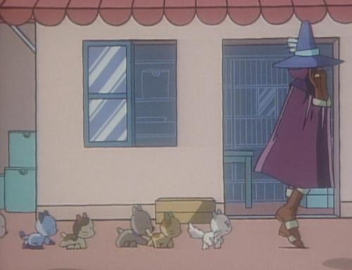 笛のささやき 3丁目のタマ うちのタマ知りませんか?