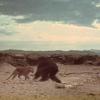 【ブログ記事】『2001年宇宙の旅』の「人類の夜明け」で猿人がヒョウに襲われるシーン